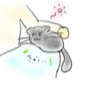 【チンチラの生態】お声(うれしいとき)