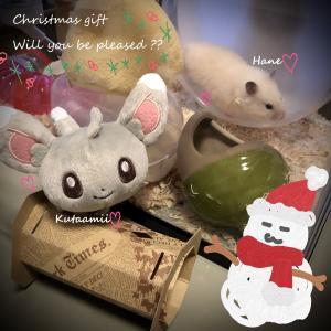 我が家のメリークリスマスなプレゼント