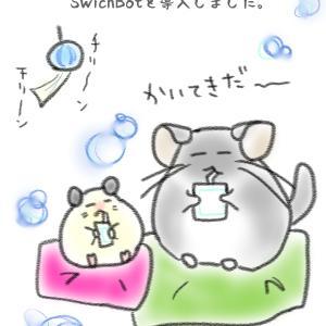 【飼育環境】温度管理グッズ