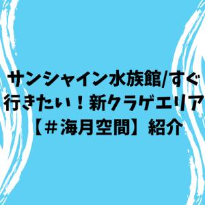 サンシャイン水族館/すぐ行きたい!新クラゲエリア【#海月空間】紹介