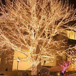 大阪の冬に光の饗宴はおすすめ!各場所/混雑具合案内します!