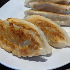 マサチューセッツ工科大学のキャンパスに来てみたら、Dumpling Daughter ダンプリング ドーターというお店で久々に美味しい餃子とかにありつけた!