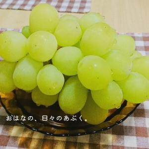 秋の味覚、ブドウを食べる。