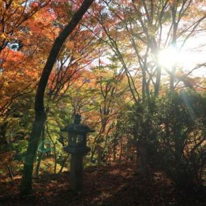 談山神社へ紅葉狩り