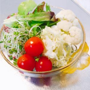 アブラナ科の野菜で病気を予防
