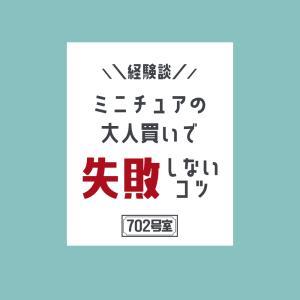 【経験談】失敗しない!ミニチュア大人買いのコツ