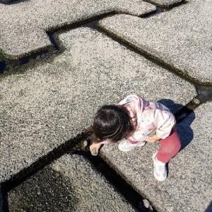 子育て録「多摩川の自然で遊ぶ子供達」
