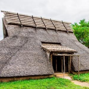 根(root)と屋根(roof)の関係について