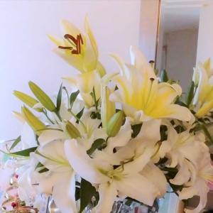 スマホに残る花の写真