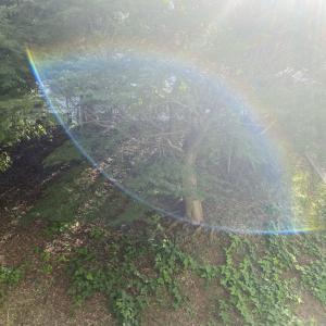 目の形をした虹って開運のお知らせ?