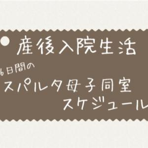 【産後入院生活】スパルタ母子同室スケジュール