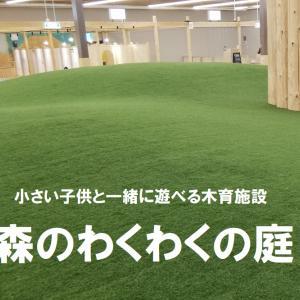 子供が裸足で走れる室内型の芝公園と小さい子供と一緒に遊べる木育施設で人気の【森のわくわくの庭】。実際に行って調査しました!!