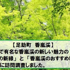 【足助町 香嵐渓】紅葉で有名な香嵐渓の新しい魅力の「初夏の新緑」と「香嵐渓のおすすめ料理」を実際に訪問調査しました。