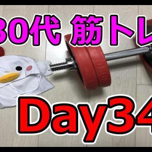 【Day34】コアラ小嵐さんの動画を見て改心しました【鳥から男爵の筋トレダイエット】