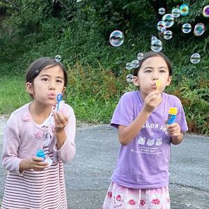 フランス7人子どもが日本で驚いたこと