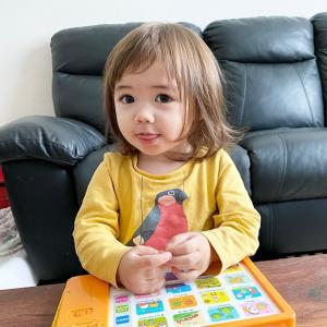 フランス7人子どもの赤ちゃんの面白い動画