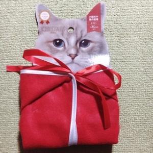 コロナ再拡大でGo toに思うことと100円ショップのクリスマス猫グッズのこと。