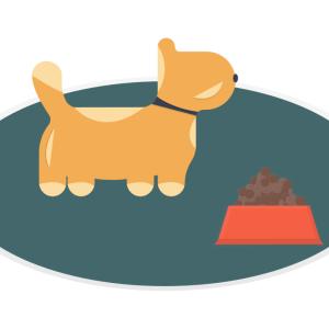 【実験コーナー】ダウの犬 運用状況2021年6月