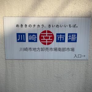 【知らなきゃ損!】通や業者が通う 川崎幸市場!!