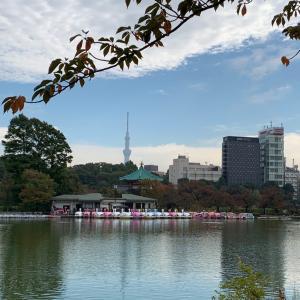 朝の上野公園と六厘舎
