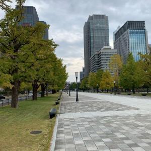 丸の内の銀杏並木と夫婦価値観の違い(旅編)
