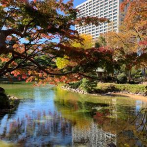日比谷公園と東京の楽しみ方
