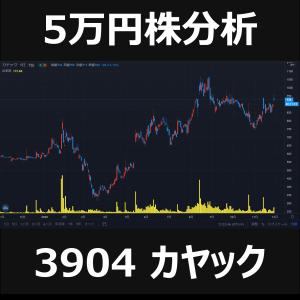 【厳選】5万円株でダブルバガー|カヤック銘柄分析