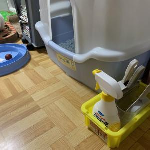 猫のトイレ掃除 【おすすめ時短グッズ7個】