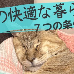 猫の快適な暮らしの条件 7つ