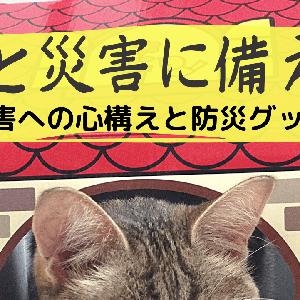 猫との暮らし【災害に備える】