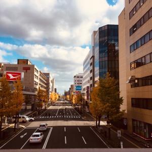 2020年 新潟駅前のイチョウ並木