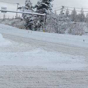 新潟県内大雪