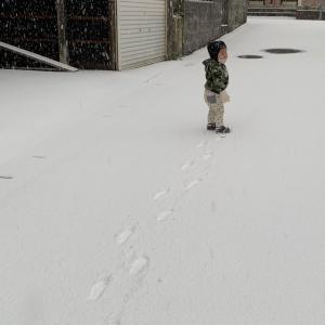 キムリアD90 雪と記念日の心境
