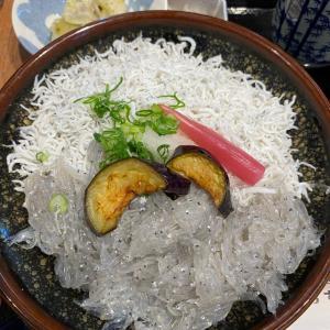 高知旅行 バナナマンのせっかくグルメで紹介されたところに行ってみた