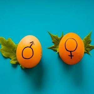 021: UK妊婦生活 予定日まであと80日 子供の性別について