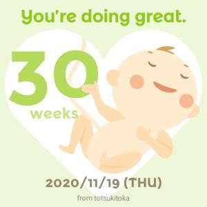 031: UK妊婦生活 予定日まであと70日 【祝】妊娠30週目突入
