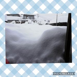 お食事サポート80日目!  雪で家から出られない/運動後のガクブルの冷え