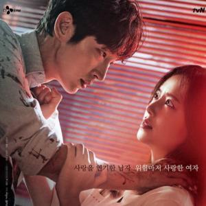 韓国ドラマ悪の華の動画を日本語字幕で無料視聴!全話フルで見れるのは?