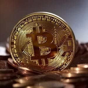 ビットコインを保有する理由と1%ルール