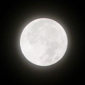 Halloweenで満月の夜