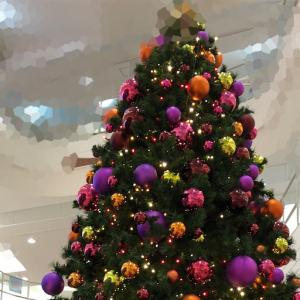 すっかりクリスマスの雰囲気