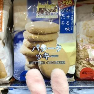 セブITパークの自宅付近でまともな日本語と変な日本語を発見(*´艸`*)