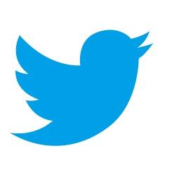 Twitterが利用出来ないんだよ!