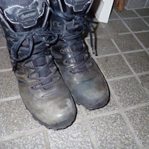 ブーツ購入 ガエルネフーガ
