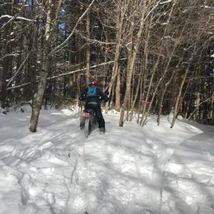 雪遊びツーの余韻と30年ぶりのスキー挑戦