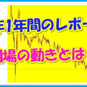 昨年1年間のレポート★相場の動きとは?