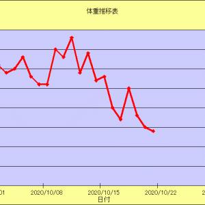 2020/10 途中経過(10/21)