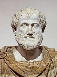 【アリストテレス】と【カイメン】