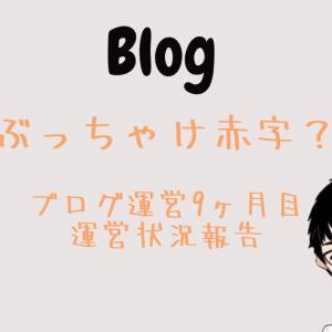 【運営報告】ブログ開設9ヶ月目 PV 収益など