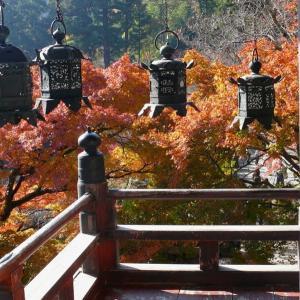 奈良 談山神社 2010/11/20